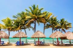 Palmiers et mer Photographie stock libre de droits