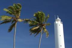 Palmiers et phare Photographie stock libre de droits