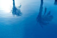 Palmiers et piscine image stock