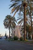 Palmiers et port de crépuscule de Paseo Maritimo avec la lumière de Noël d Photo libre de droits