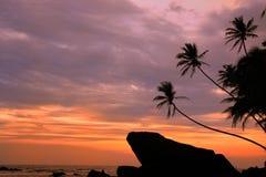 Palmiers et roches silhouettés au coucher du soleil, Unawatuna, Sri Lanka Photographie stock