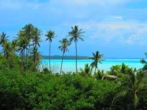 Palmiers et vue à travers la lagune tropicale Photographie stock libre de droits