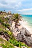 Palmiers, mer, palmiers La mer des Caraïbes image stock