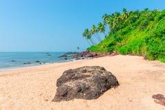 palmiers s'élevant sur une colline Photo libre de droits