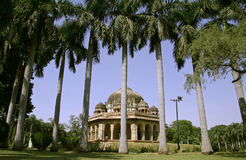 Palmiers silhouettés, jardins de lodhi photos libres de droits