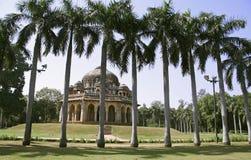 Palmiers silhouettés, jardins de lodhi image libre de droits