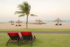 Palmiers sur la plage sablonneuse blanche, lit pliant de deux rouges Vue de plage tropicale gentille Photos libres de droits