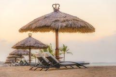 Palmiers sur la plage sablonneuse, le lit pliant deux et le parasol blancs Vue de plage tropicale gentille Image stock
