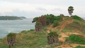 Palmiers sur le cap Île stupéfiante contre la baie de mer banque de vidéos