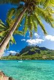 Palmiers sur le rivage de l'océan chez Moorea Images stock