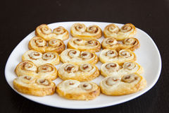 Palmiers Royalty Free Stock Photos