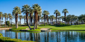 Palmiers, terrain de golf de Palm Desert Photos stock