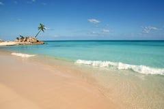 Palmiers tropicaux maya de plage de Tulum la Riviera Image stock
