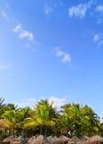 Palmiers tropicaux Mexique de palapa de Playa del Carmen Photographie stock libre de droits