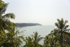 Palmiers verts dans la perspective de l'océan et du bord de mer image stock