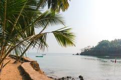 Palmiers verts sur un fond de mer et ciel sur une île tropicale Photographie stock