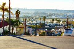 Palmifornia Imagen de archivo libre de regalías