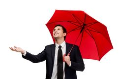 Palming up business man with opened umbrella checks the rain. Palming up man with umbrella checks the rain, isolated on white Stock Photos