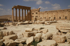 Palmira, Siria Fotografie Stock