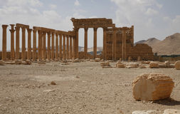 Palmira, Syria. Ruins of an old city. II thousand years BC. The Pearl of Syria. The city is constructed by the Roman empire Stock Images