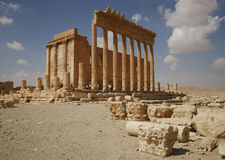 Palmira, Syria. Ruins of an old city. II thousand years BC. The Pearl of Syria. The city is constructed by the Roman empire Stock Photography
