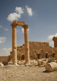 Palmira, Syria. Ruins of an old city. II thousand years BC. The Pearl of Syria. The city is constructed by the Roman empire Stock Photo