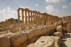Palmira, Syria Stock Image