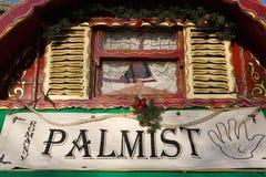 Palmist Fotografia Stock