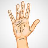 palmistry карты Стоковое Изображение RF