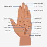 palmistry Abra las líneas de mano y el ejemplo místico de la lectura de los símbolos Imagen de archivo libre de regalías