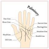 palmistry El conjeturar en la mano Las líneas en la mano Foto de archivo libre de regalías