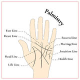 Palmistry. Guessing on the hand. The lines on the hand. Royalty Free Stock Photo