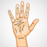Palmistry Map. Illustration of palmistry map on open palm on abstract background Royalty Free Stock Image