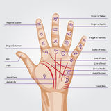 Palmistry map on open palm Royalty Free Stock Photos