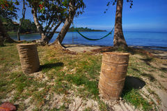 Palmns on the beach Royalty Free Stock Image
