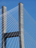 Palmo del puente Fotografía de archivo libre de regalías