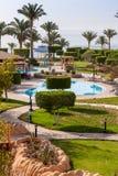 Palmowa aleja na tropikalnej egipcjanin plaży Zdjęcia Royalty Free