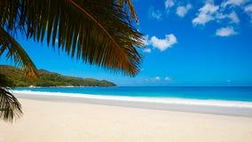 Palmowa i tropikalna plażowa panorama Anse Lazio plaża przy Praslin wyspą, Seychelles obrazy royalty free