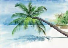 Palmowa miejscowość nadmorska Obrazy Royalty Free