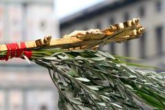 palmowa Niedziela Fotografia Royalty Free