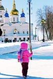 Palmowa Niedziela w Syberia zdjęcie stock