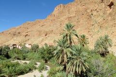 Palmowa oaza w suchych pustynnych górach w afryce pólnocnej Obrazy Royalty Free