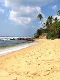 Palmowa skały plaża, Sri Lanka obraz stock