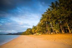 Palmowa zatoczka Nabrzeżne Fotografia Stock
