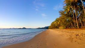 Palmowa zatoczka Queensland zdjęcia stock