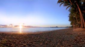 Palmowa zatoczka w Queensland Australia obraz royalty free