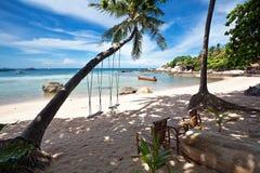 palmowe huśtawki Fotografia Royalty Free