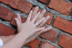 palmowi nowożeńcy z obrączkami ślubnymi na tle ściana z cegieł obrazy stock