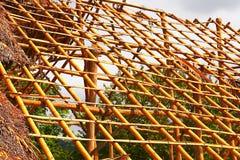 Palmowy dom II Obraz Stock