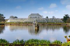 Palmowy dom, ikonowy Wiktoriański glasshouse który odtwarza tropikalnego lasu deszczowego klimat lokalizował przy Kew ogródem, An Zdjęcia Stock